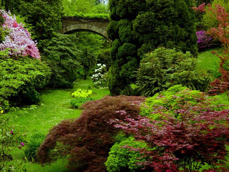 Flash sul mondo di tutto di pi i giardini di villa for Giardini immagini